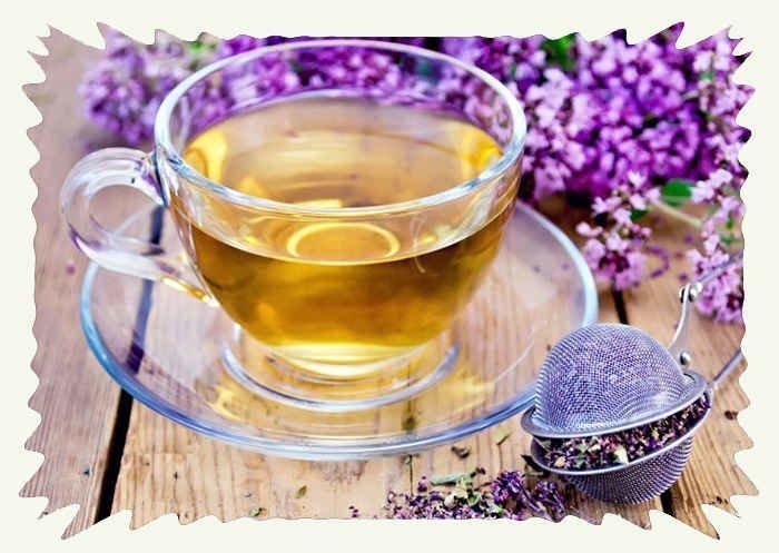 Чай с душицей при беременности