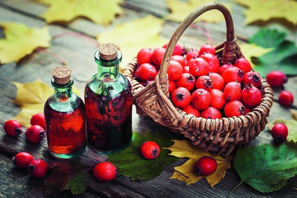 Народные средства лечения аритмии: рецепты настоев настоек отваров и полезных смесей