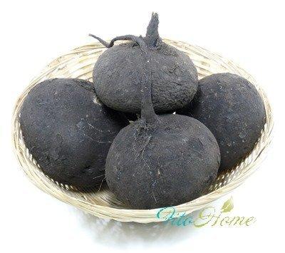 полезные свойства редьки черной