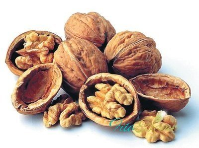 грецкие орехи хороши для памяти