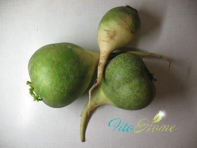 зеленая редька в салате