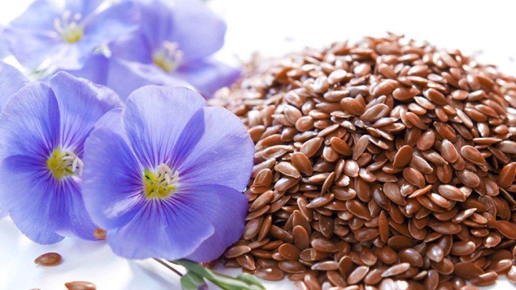 Очищение организма семенам льна