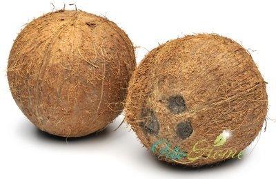 кокос и укрепление иммунитета