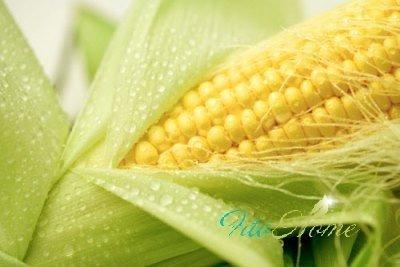кукурузные рыльца для лечения почек