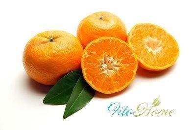 мандарины полезные свойства
