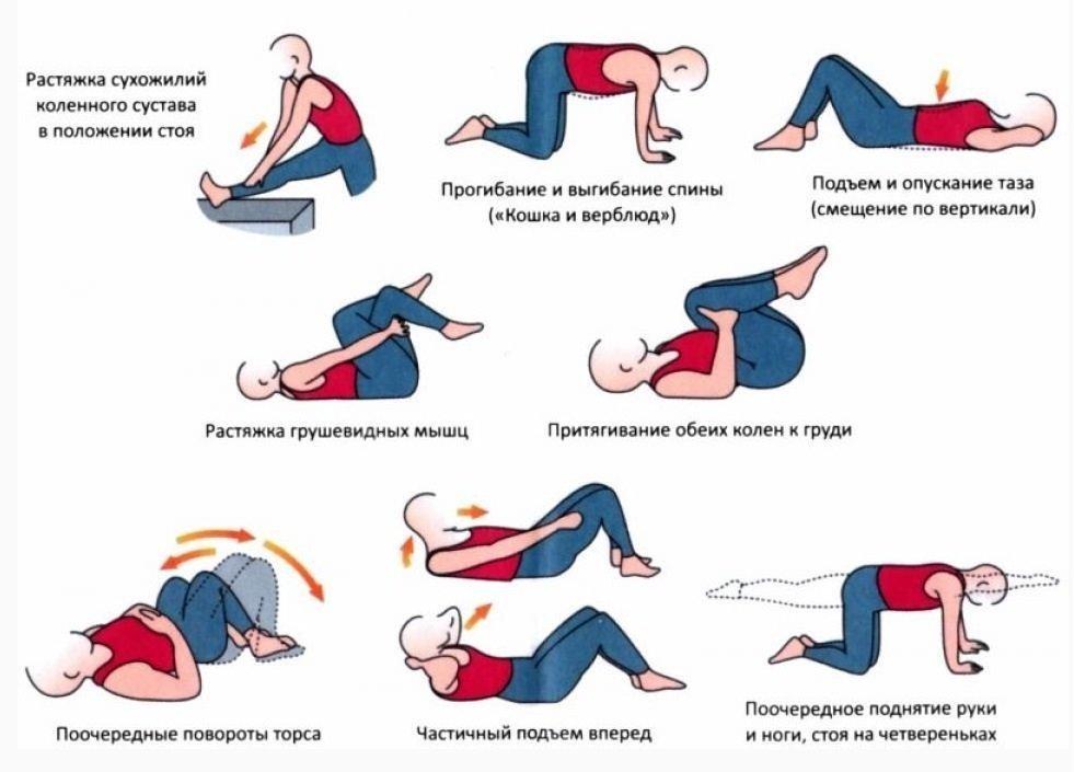 Лечебная физкультура сколиоз 2 степени