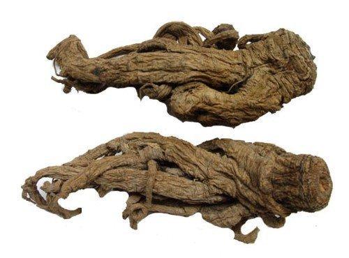 корень любистока