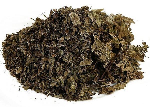 ортосифон листья