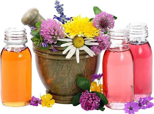 лечебные травы для женщин