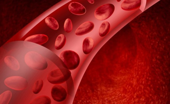 мало холестерина в крови