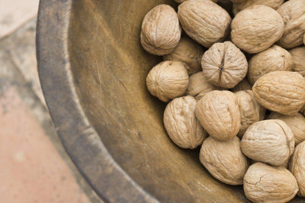 Выращивание грецкого ореха из семян ЧАСТНЫЙ ДОМ. САД